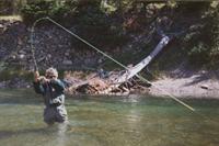 Taneycomo tailwater fishing