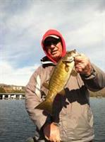 Wintertime smallmouth bass.