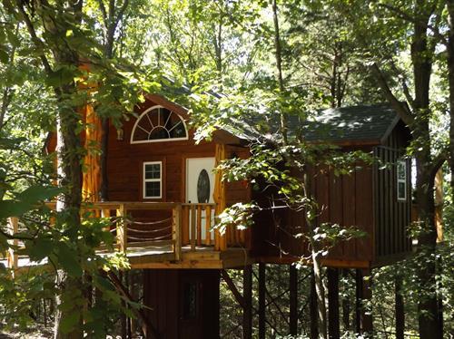 Gallery Image tree_house.jpg