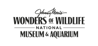 Johnny Morris' Wonders of Wildlife Museum/Aquarium