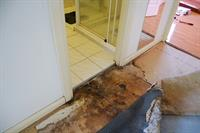 Failure of waterproofing to a shower recess has allowed water to escape out into the hallway and severley damage floor coverings and decay sorrounding skirting boards and door jamb