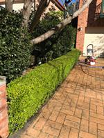 Do your hedges need a trim? Does your driveway and surrounding areas need to be hit with the pressure washer? Be sure to give our friendly team a call.