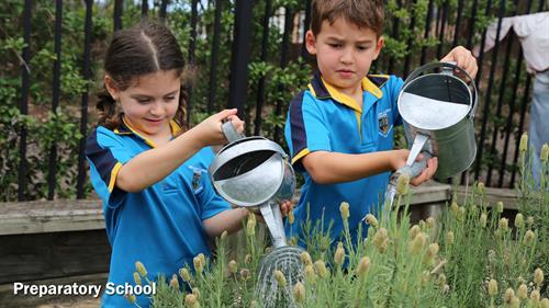 Gallery Image 1.7Prep_School(1).jpg