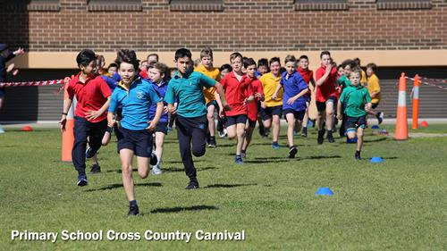 Gallery Image 4.2PS_Cross_Country_Carnival_5.jpg