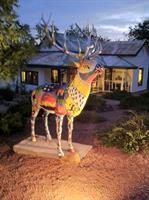 Down The Street Art Gallery home of Artie the Elk