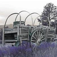 40th Annual Frontier Day Festival