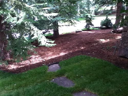 Lawn Care & Mulching