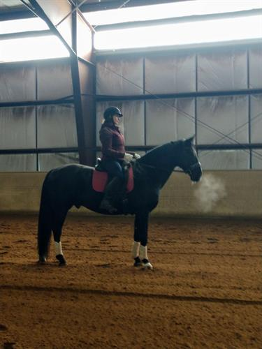 The combination of Ortho on horse and rider and a strong Pilates practice