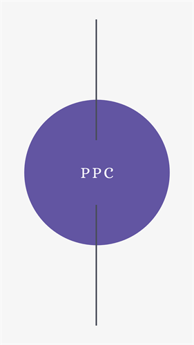 Gallery Image PPC.png