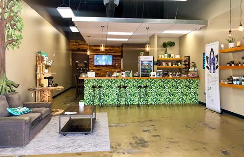 DuReal Lief Wellness Bar interior