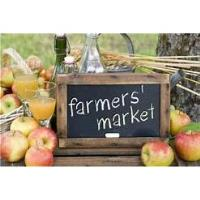 Gulf Breeze Farmers Market