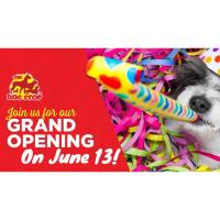 The Dog Stop Grand  Opening