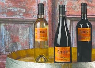 Gallery Image amavi-bottles-2_m.jpg
