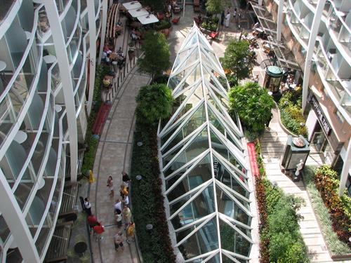 Central Park on the Allure of the Seas