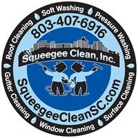 Squeegee Clean Inc