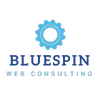Bluespin Web Consulting, LLC
