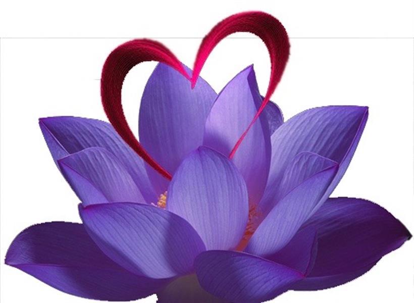 Empowering Awakened Hearts LLC