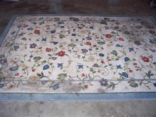 Area Rug dirty - BEFORE