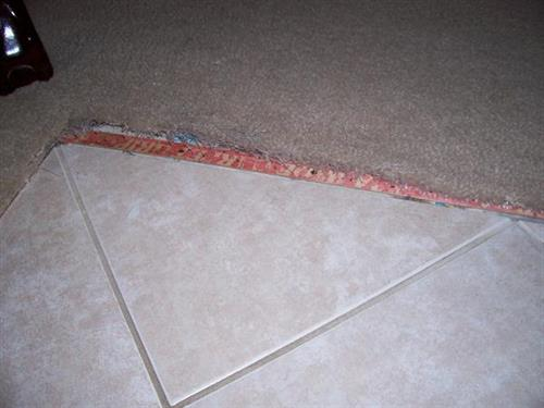 Carpet tore up by pet - BEFORE