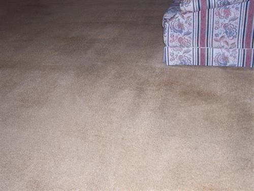Carpet - Cleaned - AFTER