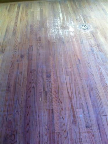 Wood Floor scuffed up - BEFORE