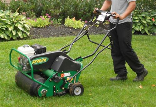 Gallery Image lawn_aeration.JPG
