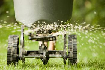 Lawn Spraying!