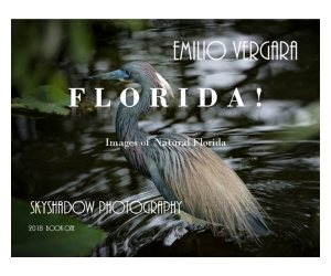 Book cover of FLORIDA! Images of Florida