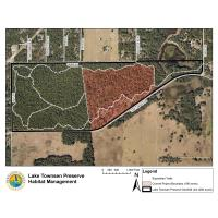 News Release: 4/27/2021:Habitat management project to begin at Lake Townsen Preserve