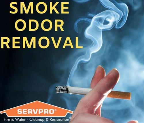 Gallery Image Smoke_Odor_Removal.jpg