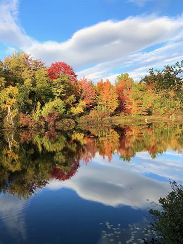 Fall in New England - Frye Island, Maine