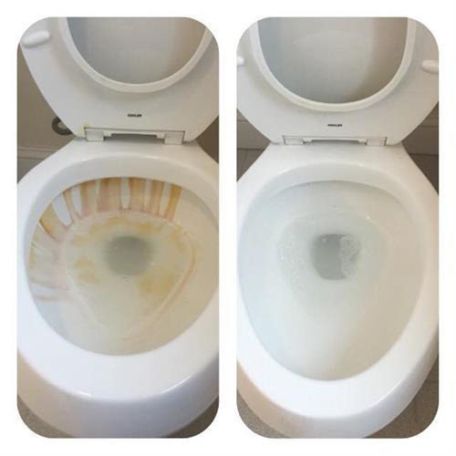 Gallery Image Toilet1(3).jpg