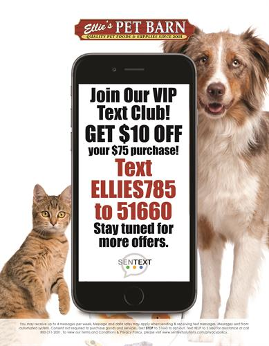 Ellie's Pet Barn - Worcester, MA