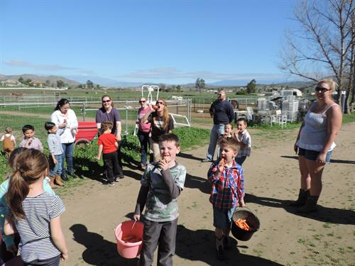 Austistic children demonstrating how to feed a carrot before going out to visit the horses at STAT.