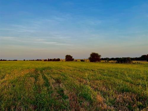 83+/- acres in eastern Coryell County, Tx. The property is located 5 miles west of Lake Belton on paved Co Rd 356 within a 20 minute drive of Temple,Tx.
