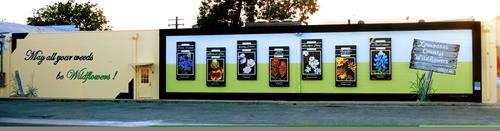 """Lampasas County Wildflowers"" mural - 4th and Pecan Street, Lampasas, TX"