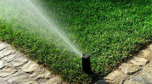 Gallery Image sprinkler_pic.jpg