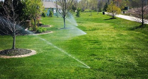 Gallery Image sprinkler_pic_8.jpg