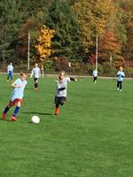 Gallery Image National_Soccer_Hall_of_Fame_-_kids_playing.jpg