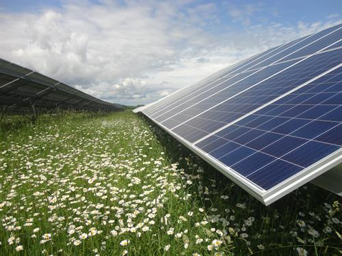 Gallery Image 1ST_PLACE_-AES_Forefront_Solar_Phase_I.JPG