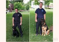 Glens Falls PD K9 Unit (Neeko and Phlash)