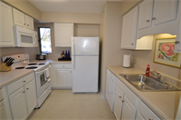 Large, bright kitchen with microwave and dishwasher.