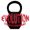Evolution Strength & Performance