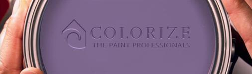 Colorize Inc.  (The Paint Professionals)