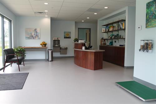 Springs Family Veterinary Hospital has a spacious, well-lit reception area.