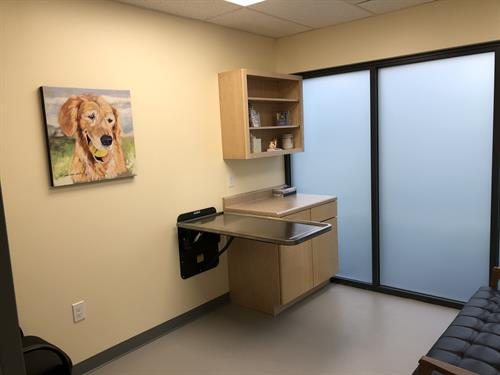 Our exam rooms have lots of natural light, which makes for very cheery spaces.