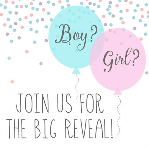 Gallery Image gender_reveal_balloon_pic.jpg