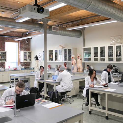 UNH Manchester offers state-of-the-art laboratory facilities in biology, biotechnology, neuropsychology and more.