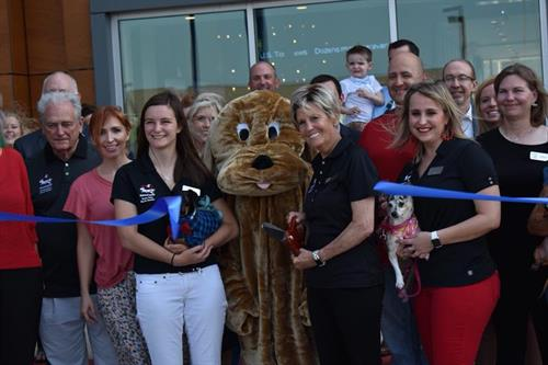 Wienerspiel BCS Chamber Ribbon Cutting