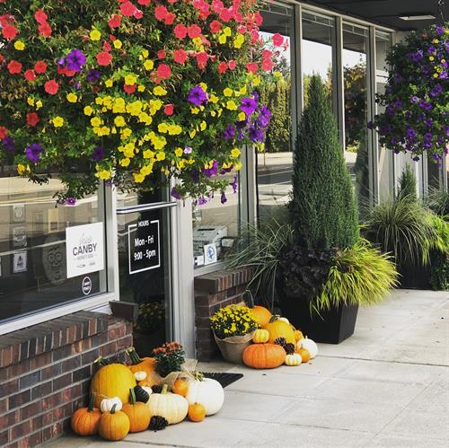 Fall at Oliver Insurance